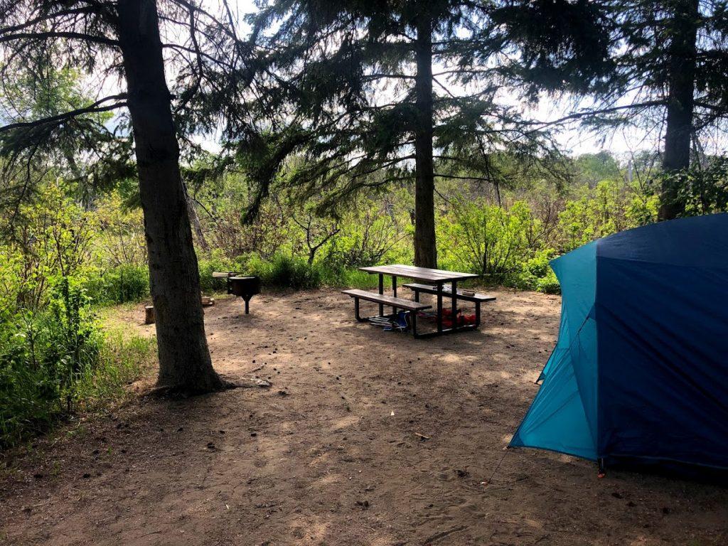 Campsite at Douglas Provincial Park