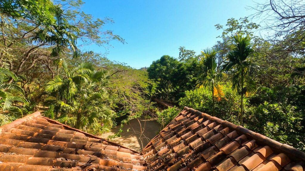 Costa Rica Tree House View