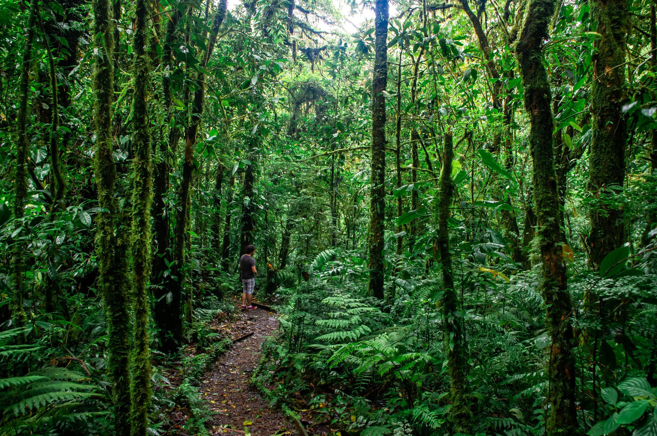 Santa Elena Costa Rica