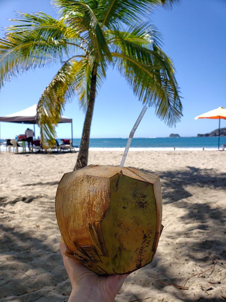 Coconut Drink Playa Carillo
